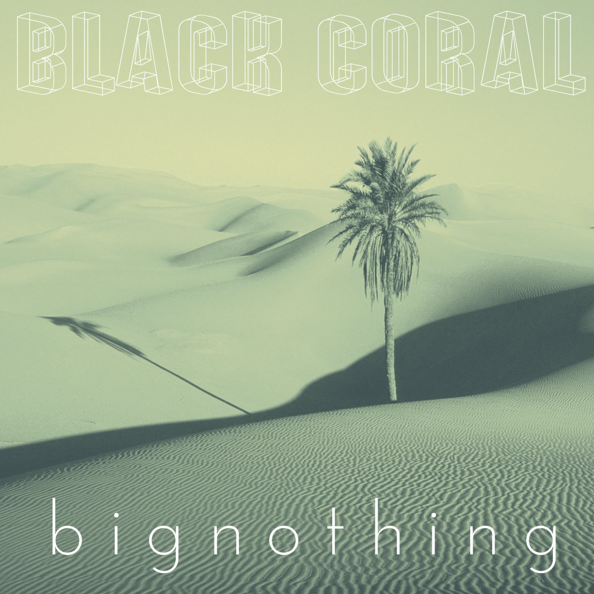 CoverArt-Black Coral Big Nothing-2015