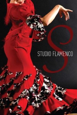 Studio Flamenco