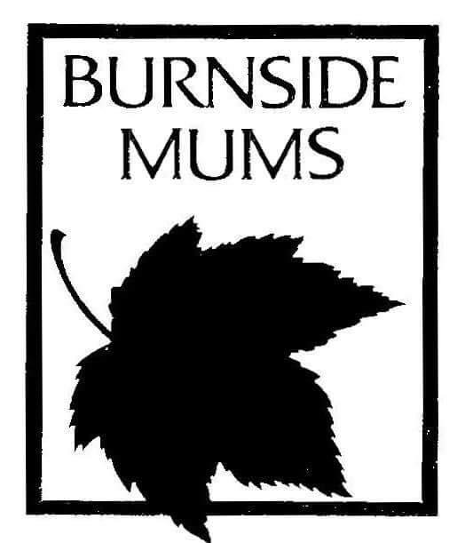 Burnside Mums