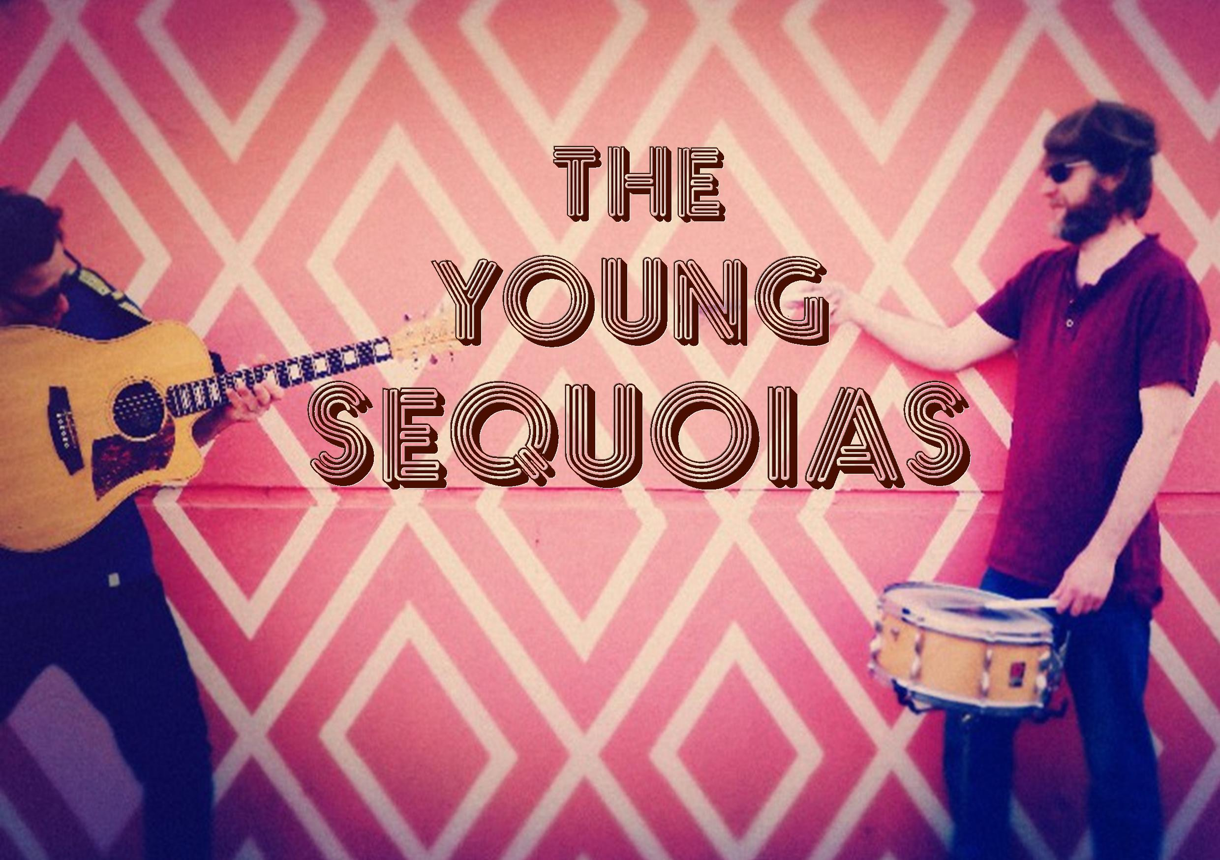 The Young Sequoias  Copy